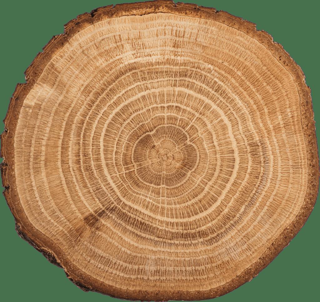 akátové dřevo průřez Pila-lesnictví Jan Sečkař, Velká nad Veličkou